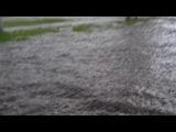 02.06.2013 14:11  м.Марьино ЮВАО Москва